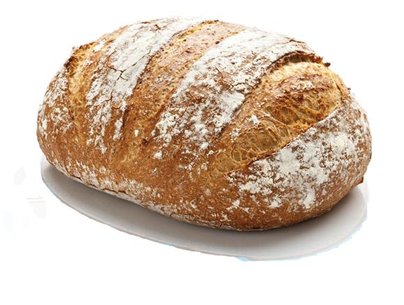 Panes masa madre